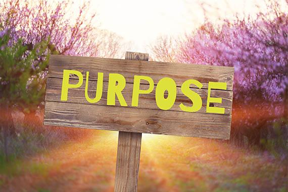 employee-purpose